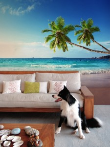 Seychelles-Wall-Mural-by-PIXERS