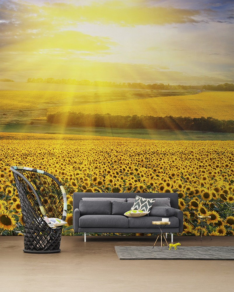 Sunflowers-Wall-Mural-by-PIXERS