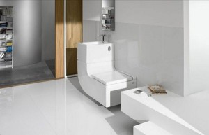 Washbasin-+-Watercloset4-by